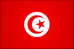 1231872277_tunisie.png