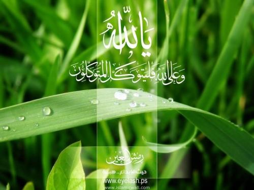 yeh_allah-702668.jpg